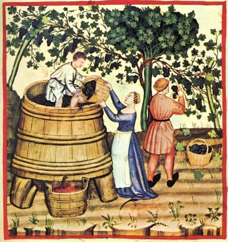 tramping grapes