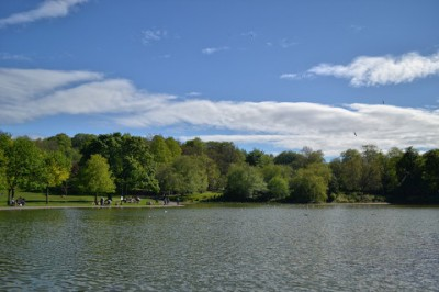 The Pond in Queen's Park on Glasgow's Southside...
