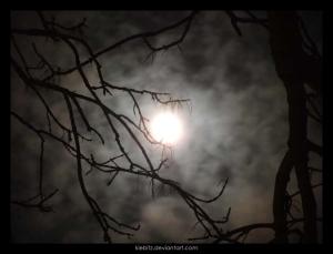 Spooky_Moonlight_by_kiebitz