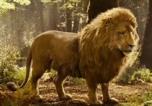 Aslan, also from the 2005 movie