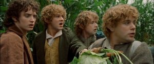 The Hobbits Elijah Wood, Dominic Monaghan, Billy Boyd, Sean Astin Fine actors all!