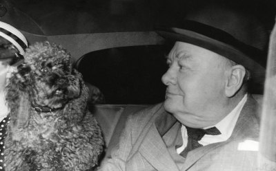 Churchill with Rufus the poodle
