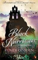 narcissus b