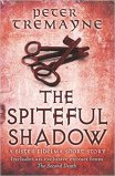 the spiteful shadow